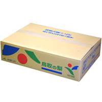 秋栄梨<5kg> 12玉
