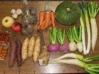 自然農法・自然栽培 野菜セット(秋季) Lサイズ(9~13㎏)