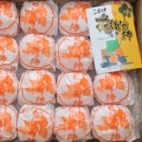 花御所柿(赤秀)5kg 3L 18玉