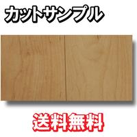 【カットサンプル】【捨貼用】【特殊加工シ