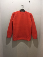 【LiSS】 POLYESTER CREWNECK KNIT