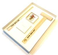 【JAM HOME MADE】名もなき指輪キット - NAMELESS RING KIT -BRASS-