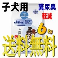 ドクターズチョイス 子犬用(パピー)6kg【送料無料】
