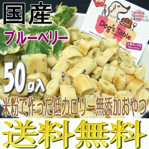 お米チップス ブルーベリー50g ドッグステーブル 送料無料