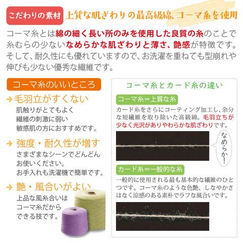 オリーブサラソックス3足ギフト(女性用)