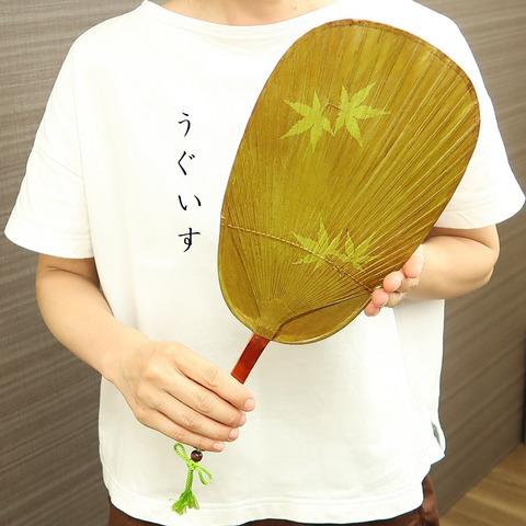 丸亀竹うちわ(柿渋塗りもみじ柄・4色)
