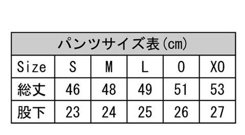 Desporteオリジナルプラクティスパンツ(部分昇華)