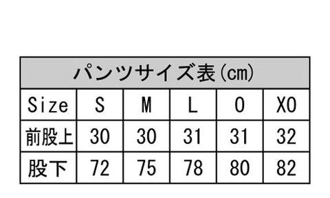 【期間限定予約】Desporteピステパンツ