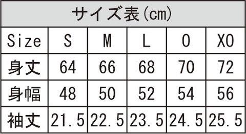 Desporteオリジナルプラクティスシャツ(部分昇華)