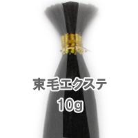 束毛タイプ 人毛 エクステ 1束 10g