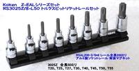 RS3025Z/8-L50 トルクスビットレールセット