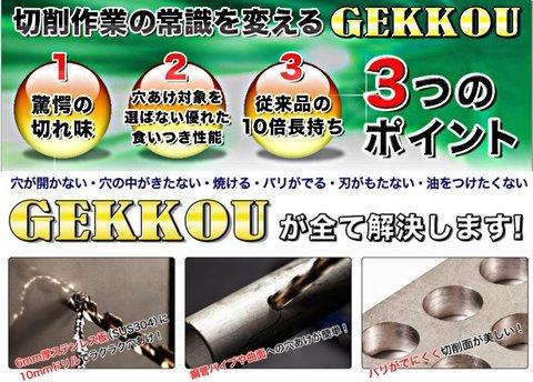 ビックツール US-GK15P GEKKOUドリル 月光ドリル15本セット(3.0~10.0ミリ) 代引発送不可 全国送料無料 即日出荷 税込特価