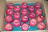 エコファーマー認定 特秀 りんご 10kg