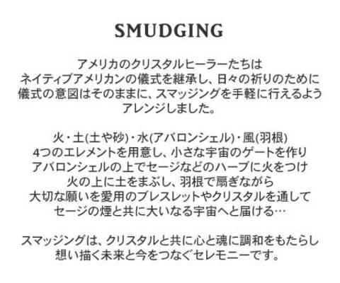 スマッジングとは