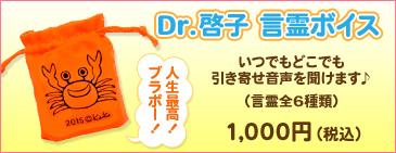 Dr.啓子言霊ボイス