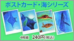 越智啓子先生オリジナルポストカードD・海シリーズ(4枚組)