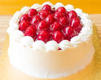 糖質制限の木苺レアチーズケーキ15cm