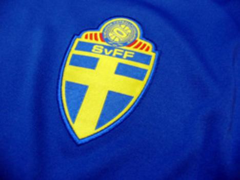 スウェーデン代表 アウェイ 長袖
