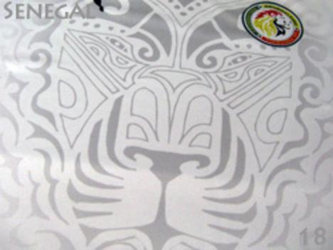2018 W杯 セネガル代表 ホーム