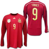 スペイン代表 トーレス