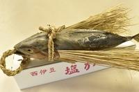 西伊豆 ワラ飾り付き 塩鰹 季節限定
