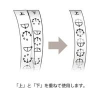カタカムナ マスキングシート ひふみ祝詞
