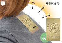 テラカタくん(3種類各2枚組)