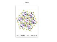 十言神呪クスリエ アマテラスオホミカミ(A6サイズ/20枚入)
