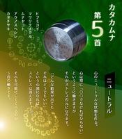 カタカムナ バレル・コア 5首