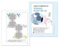 BOOK ひと箱まるごと目醒めのツール クスリ箱2(ビオ・マガジン)