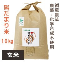 【陽だまり】陽だまり米 10kg※玄米