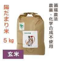 【陽だまり】陽だまり米 5kg※玄米