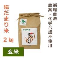 【陽だまり】陽だまり米 2kg※玄米