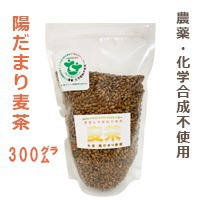 【陽だまり】麦茶 300g