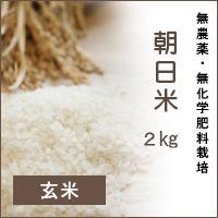 陽だまり農園「朝日米」2Kg*玄米*無農薬・無化学肥料栽培