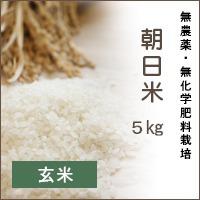 陽だまり農園「朝日米」5Kg*玄米*無農薬・無化学肥料栽培