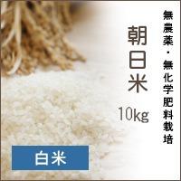 陽だまり農園「朝日米」10Kg*白米*無農薬・無化学肥料栽培