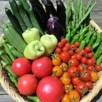 野菜(自然食品)