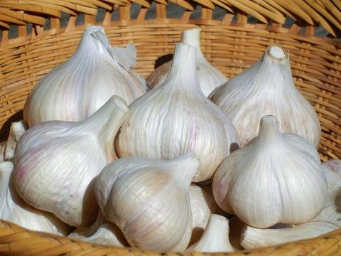 自然栽培・自然農法 ニンニク(大小混合) 100g