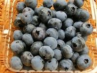 冷凍自然農法ブルーベリー