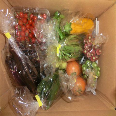 自然農法プラチナ・自然栽培 野菜セット(夏季) Lサイズ(ボリュームの3~4㎏!!)