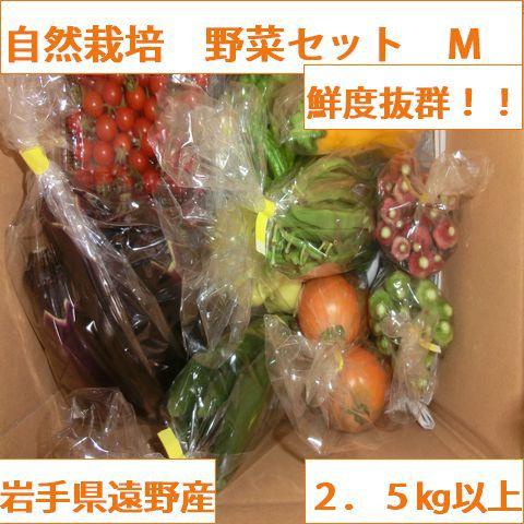自然農法・自然栽培 野菜セット(夏季) Mサイズ(2.5㎏~3㎏)