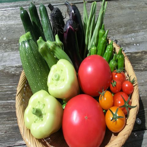 自然農法・自然栽培 野菜セット(夏季) Sサイズ(1.2~1.5kg)