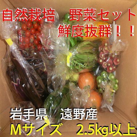 自然農法・自然栽培 野菜セット(夏季) Mサイズ 普段使いに(2.5㎏~3㎏)