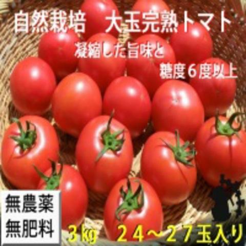 自然農法・自然栽培プラチナ 樹で熟した完熟トマトセット 3㎏(24~27玉)