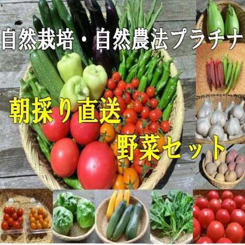 自然栽培・自然農法野菜セット