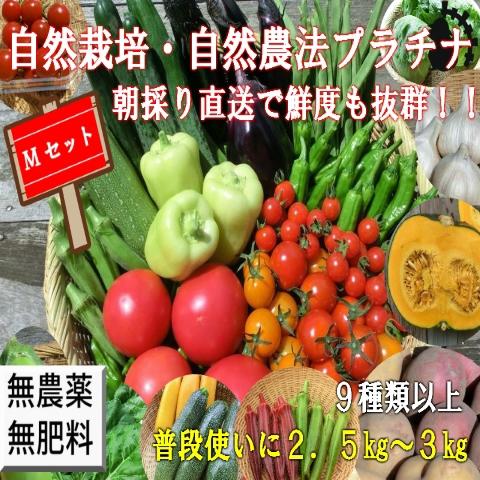 自然農法・自然栽培野菜セット