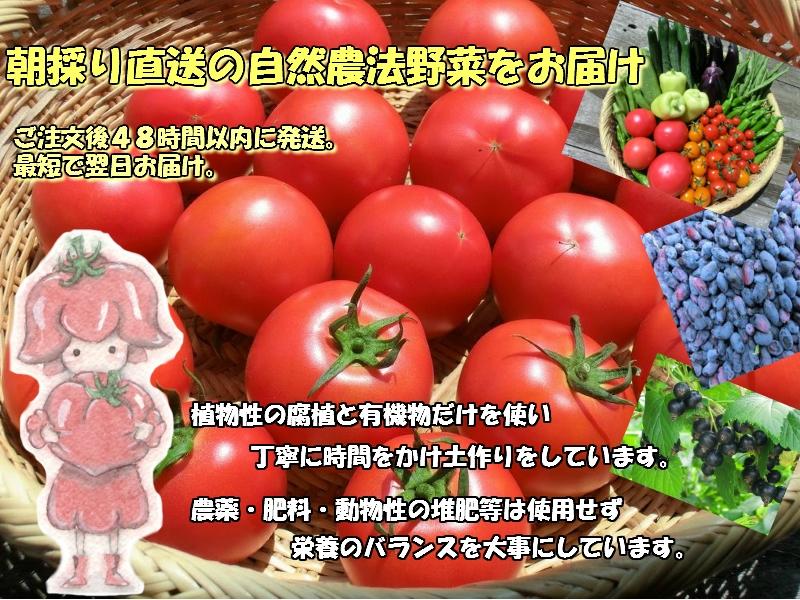 遠野市から美味しい自然農法野菜を宅配でお届け