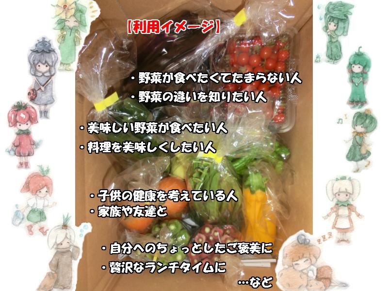 自然農法野菜の食べ方、使い方