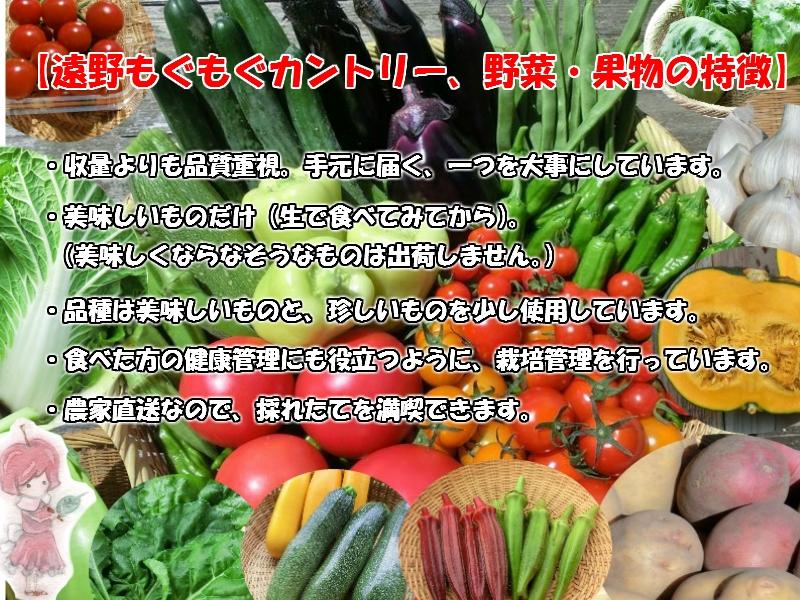 自然農法野菜の特徴